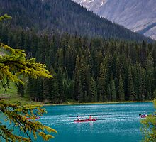 Emerald Lake in Yoho National Park by Chris  Randall