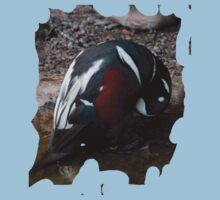 Penguin Shirt Baby Tee