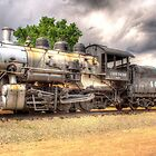 Union Pacific No. 4455 by lkrobbins