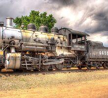 Union Pacific No. 4455 by lkrobbins