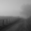 shadows in the fog by dc witmer
