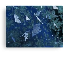 Frosty Garden Canvas Print