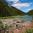 Duffey Lake by Chris  Randall