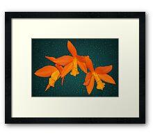 Orchid Bright Orange Natural Color Framed Print