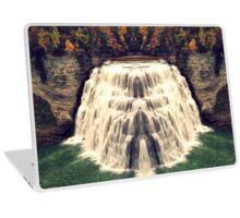 Reflection of Spring Falls Laptop Skin