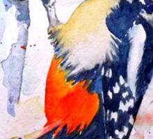 Woodpecker 2 Sticker