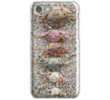 Crab molts iPhone Case/Skin