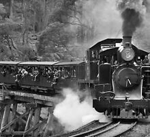 Puffing Billy, Dandenong Ranges, Victoria by davebanenphoto