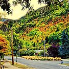 Arrowtown by wallarooimages