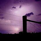 Storm Fence by kurrawinya