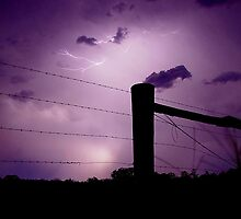 Storm Fence by Penny Kittel