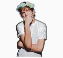 Bo Burnham Flower crown by blklk