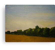 Corn Field with Trees  Canvas Print