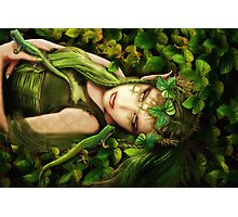 Elf Hazel Photographic Print