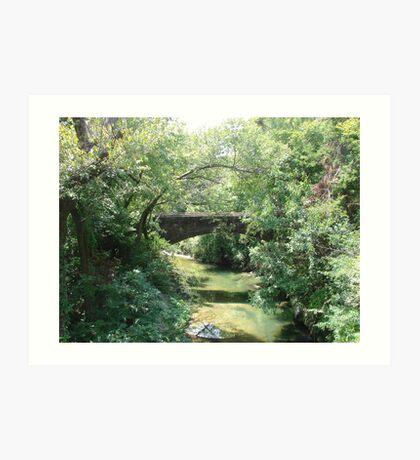 """Bridge"" by Carter L. Shepard Art Print"