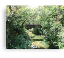 """Bridge"" by Carter L. Shepard Canvas Print"
