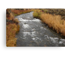 """Desert River"" by Carter L. Shepard Canvas Print"