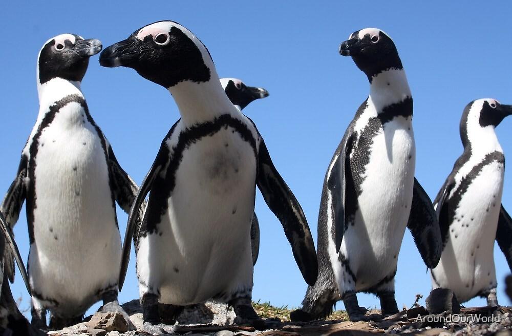 Interested Penguins by AroundOurWorld