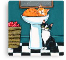 Marmalade's Sleeping Canvas Print