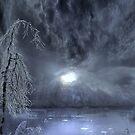 Frost by Igor Zenin
