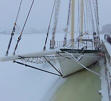 Appledore IV - Bowsprit by Francis LaLonde