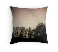 Light in the shadow Throw Pillow