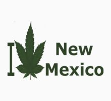 0229 I Love New Mexico  by Ganjastan