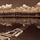 Sitting By The Dock at Loon Lake by Brenton Cooper