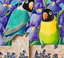 Sweetest Dsy Black-faced Lovebirds by jkartlife