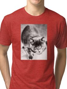 Little Sis Tri-blend T-Shirt