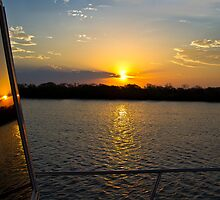 Coomera River Reflections by gamaree L