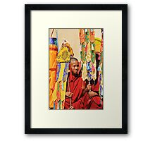 Young Monk Framed Print