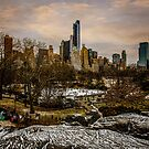 January, Central Park South by Chris Lord