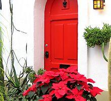 The Red Door by Sandra Fortier