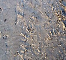 Footprints on sand by Ashoka Chowta