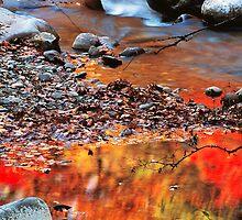 REFLECTION ,LITTLE RIVER by Chuck Wickham