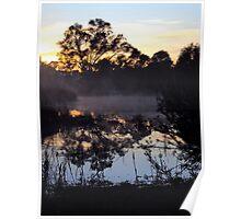 Wetlands morning Poster