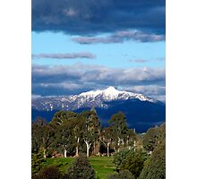 Buller by the green Photographic Print
