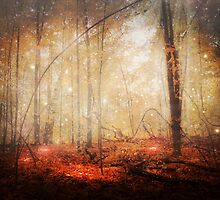 Fire Within by jenndalyn