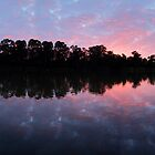 Murray River Sunrise.   by Andy Newman