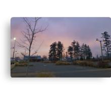 dog park at dusk 3 Canvas Print
