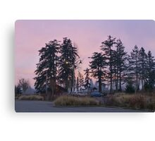 dog park at dusk Canvas Print