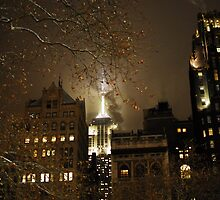 Empire State Building by mjbcoffey95