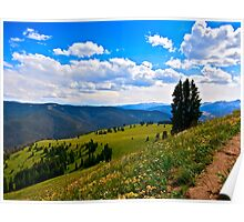"""""""Afternoon Summer Hike"""" Vail, Colorado Poster"""