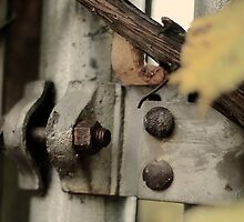 the rusty nut by ericreising