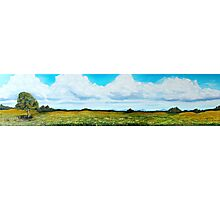Summer Wild Flower Meadow Panoramic Photographic Print