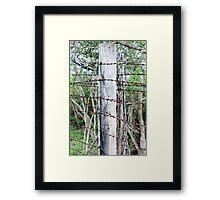 Barbed barrier Framed Print