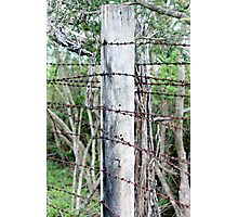 Barbed barrier Photographic Print