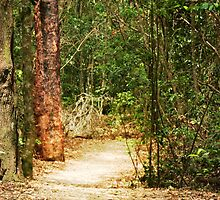 Take a walk on the wild side by myraj