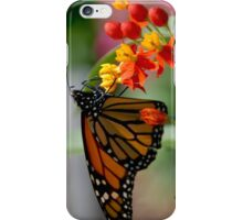Butterfly 13 iPhone Case/Skin